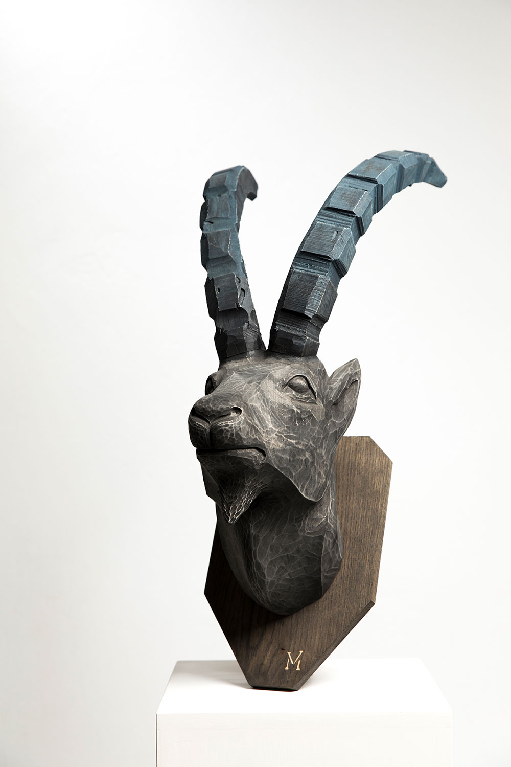 ibex_in_oak_02